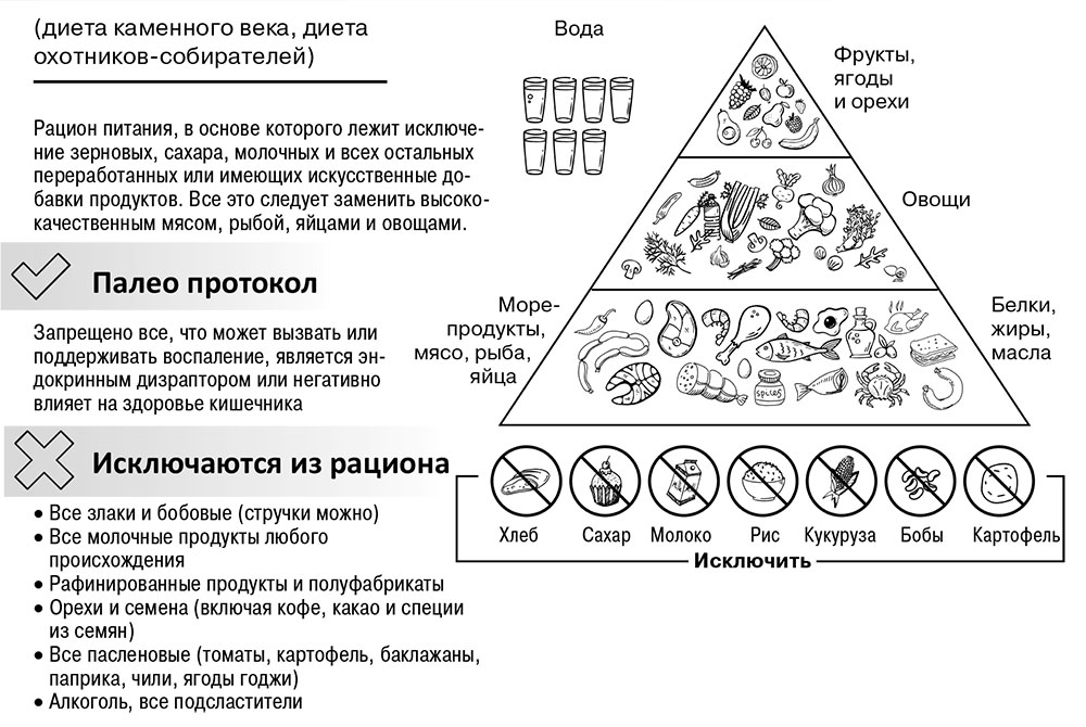Палео Протокол Диета Меню